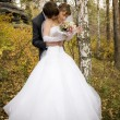 Just married - Foto de Stock