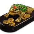 Symbol of Feng-Shui: Three-legged Toad ( — Stock Photo