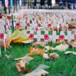 Stock Photo: Poppy Day crosses in Westminster Abbey
