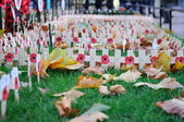 Poppy Day crosses in Westminster Abbey — Stock Photo