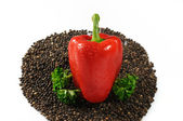 Red paprika with black pepper and parsle — Stock Photo