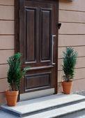 ξύλινη πόρτα — Φωτογραφία Αρχείου