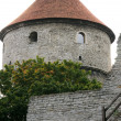 Royalty-Free Stock Photo: Part of the city wall of Tallinn