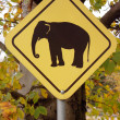 Elephant warning sign — Stock Photo #1098049