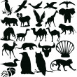 Silhouettes - animals — Stock Photo