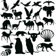 Silhouettes - animals — Stock Photo #1127561