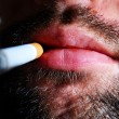 Stock Photo: Close-up of unshaven smoker