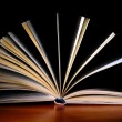 Open book — Stock Photo #1125061