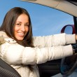 Beautiful driver — Stock Photo #1156415