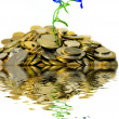 Royalty-Free Stock Photo: Island of coins