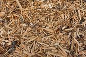 Wooden mulch — Stock Photo