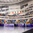 Ice stadium — Stock Photo #1108926