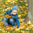 The boy in autumn park - Lizenzfreies Foto