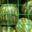 Royalty-Free Stock Photo: Watermelons