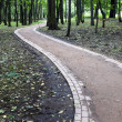 Footpath in park — Stock Photo #1115834