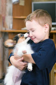 Puppy licking childs face — Stock Photo