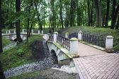 Bridge in park — Stock Photo