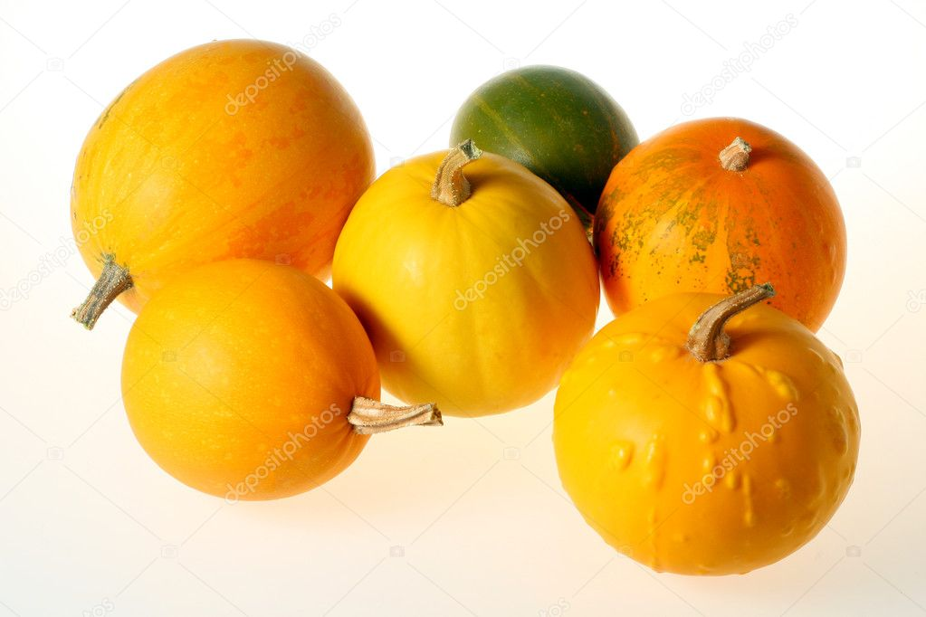 Small decorative pumpkins on a white background — Stock Photo #1116858