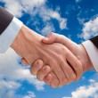 Business handshake — Stock Photo #1120075