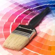 Foto de Stock  : Colorful Paint Color Swatches