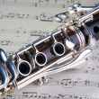 Wooden wind musical instrument clarinet. Close-up. — Stock Photo #1120894