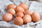 Chicken eggs on a sacking — Stock Photo