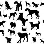 Dog Silhouette — Stock Vector