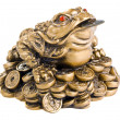 Feng Shui Frog - Stock Photo