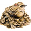 feng shui frog — Stock Photo