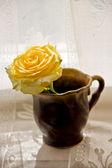 Růže v šálku s kávou — Stock fotografie