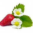 Royalty-Free Stock Photo: Strawberry.