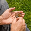 Royalty-Free Stock Photo: Money coins in the hands