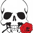 Vector de stock : Skull & rose