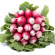 Stock Photo: Fresh radish on white background