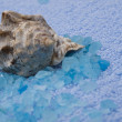 Royalty-Free Stock Photo: Marine salt, cockleshell and blue towel