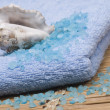 Marine salt, cockleshell and blue towel — Stock Photo #1101780