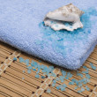Marine salt, cockleshell and blue towel — Stock Photo