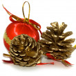 Decoration on Christmas — Stock Photo #1158234