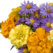 Stock Photo: Bright autumn flowers on white backgro