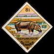 Postal stamp. hippopotamus - Stock Photo