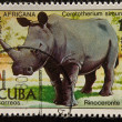 Stock Photo: Vintage stamp depicting White Rhinocero