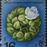 Postal stamp — Stock Photo #1266806