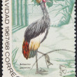 Royalty-Free Stock Photo: Postal stamp. The Black Crowned Crane