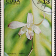 Postal stamp CUBA — Stock Photo
