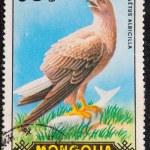 Постер, плакат: Postal stamp