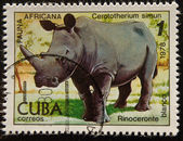 Vintage stempel beeltenis van witte rhinocero — Stockfoto