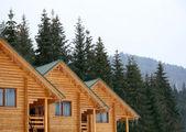 Wooden houses — Stock Photo