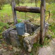 Old well — Photo
