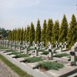 Military burial place — Stock Photo #1303902