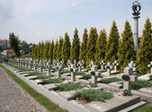 Military burial place — Stock Photo